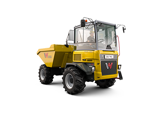 Dual view dumpers